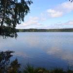 дубовское озеро