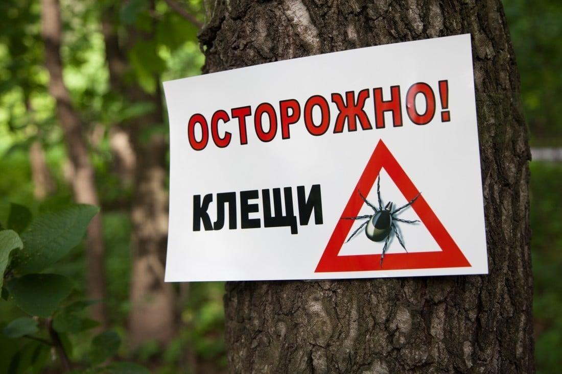 клещи предупреждение